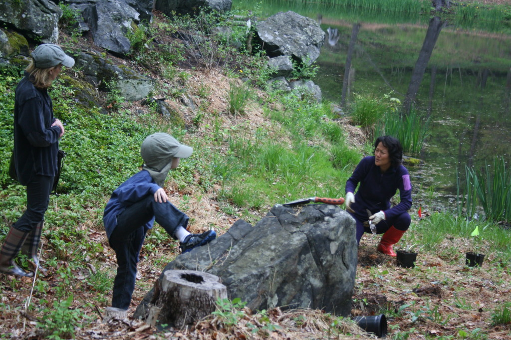 Be a Steward with Westchester Land Trust
